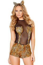 Леопард - Африканский леопард