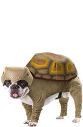 Костюмы для собак - Собака с панцирем