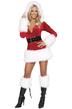 Санта в платье