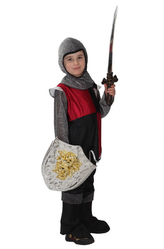 Рыцарь - Защитник короля